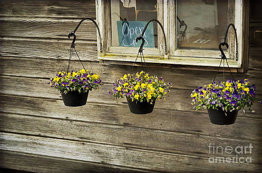 Flower Baskets Under a Window by Maria Janicki