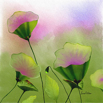 Flower Bowls by Sena Wilson