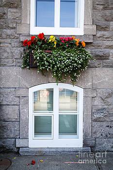Edward Fielding - Flower Box Old Quebec City