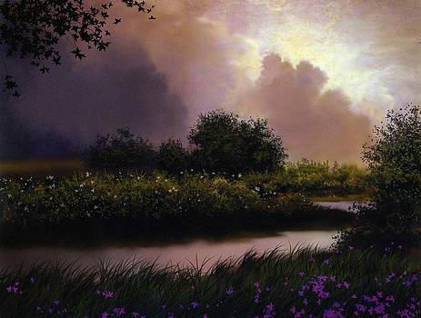Flower Creek by Robert Foster