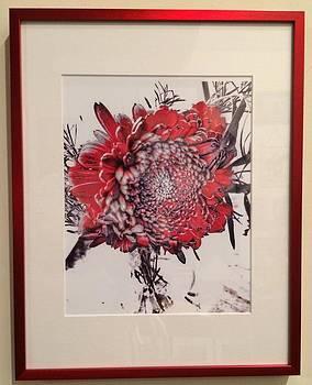Flower by Edward Santos