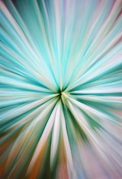 Flower Galaxy by Free Artist