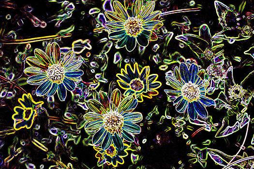 Flower Garden by Sharon McLain