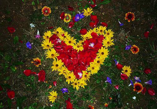 Flower Heart by Peter Berdan