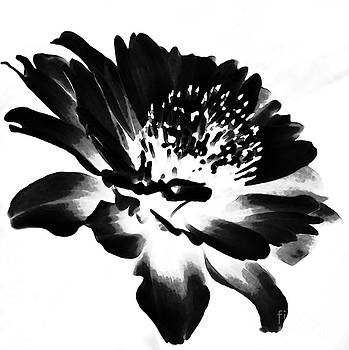 Flower in black and white by Ursula Gill