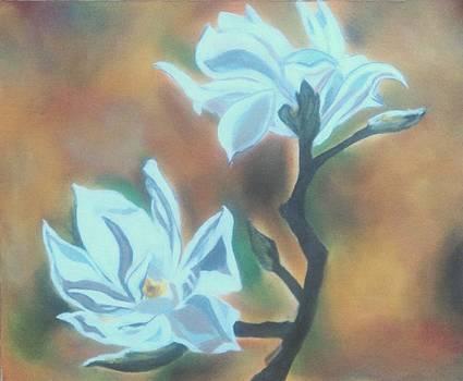 Flower by Jyoti Vats