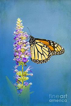 Flower Love by Betty LaRue