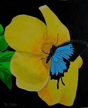 Flower n Butterfly by Raymundo Urbina