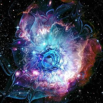 Anastasiya Malakhova - Flower Nebula