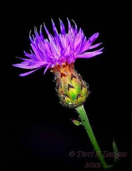Flower Point by Terri K Designs