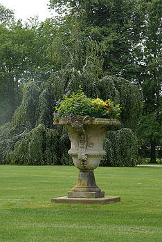 Flower Pot by Donna Desrosiers