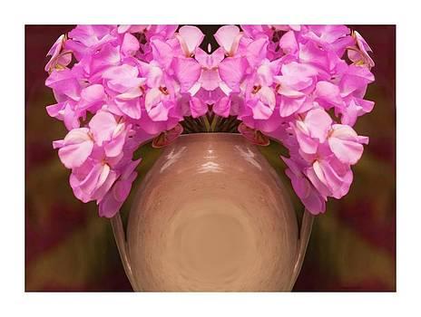 Flower Pot IV by Ck Gandhi