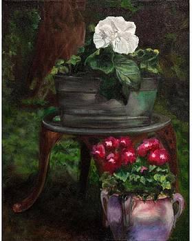 Flower pots in my garden by Michal Schwarz