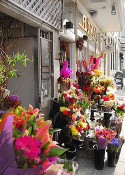 Flower Shop by Lisa Merman Bender