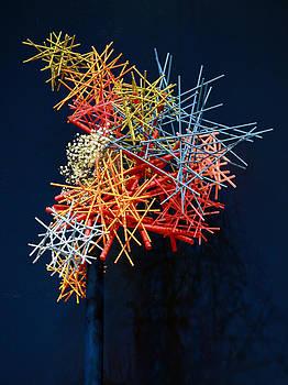 Flower Stick by Dorin Adrian Berbier