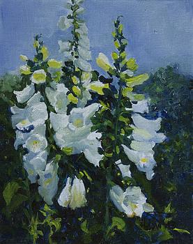 Flower_02 by Helal Uddin
