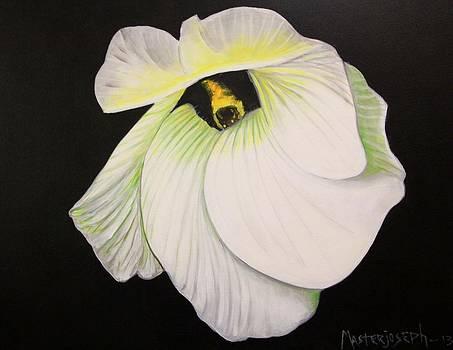 Flower2 by Anthony Masterjoseph