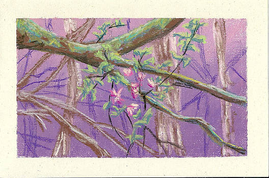 Flowering Moldy Tree by Ila Medlin