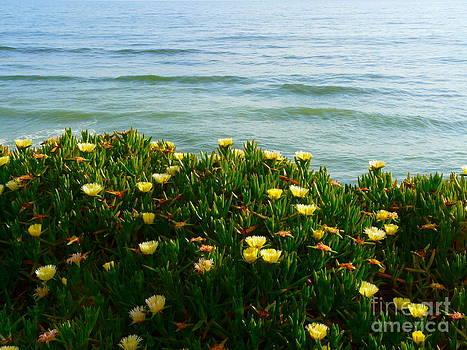 Flowers and Ocean by Avis  Noelle