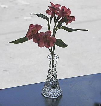 Flowers in Vase by Lauren Steinhauer