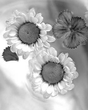 Flowers In Water by Christine Ricker Brandt