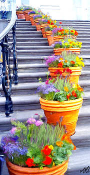 Flowers on th Stairs by Bruce Nutting