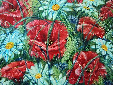Flowers Poppies and Daisies by Drinka Mercep