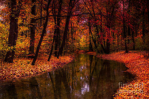 Flowing Through The Colors Of Fall by Hannes Cmarits