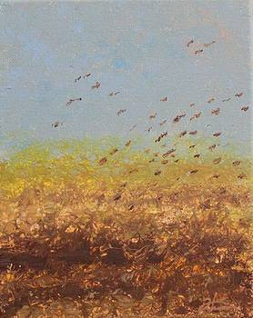 Fly Away Home by Todd Hoover