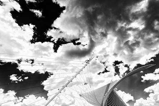 Fly Free by CJ Schmit