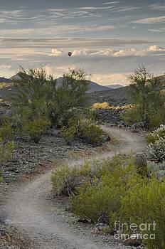 Flying Above The Desert by Tamara Becker