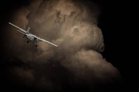 Flying into Danger by Paul Job