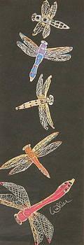 Marcia Weller-Wenbert - Flying Jewels
