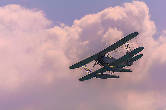 Flying Legend by Dockside Colors