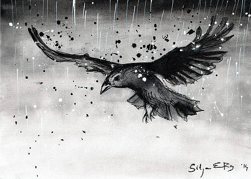 Flying raven in the rain by Silja Erg