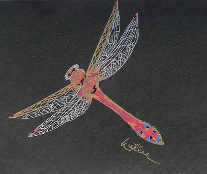 Marcia Weller-Wenbert - Flying Solo