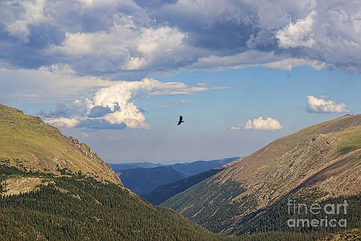 Jon Burch Photography - Flying the valley
