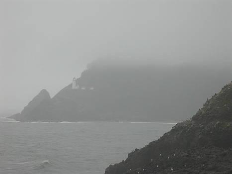 Fog At The Coast by Yvette Pichette