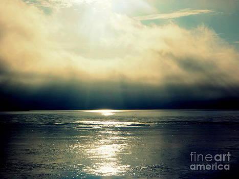 Fog Bank by Jaunine Roberts