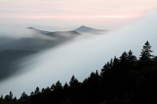 Fog on the Mountain by Bill Swindaman