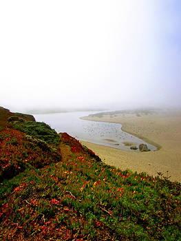 Foggy Bay by Allison Ritchey