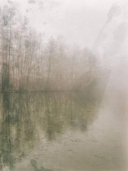 Foggy Day on the Border of the Lake by Maciej Markiewicz