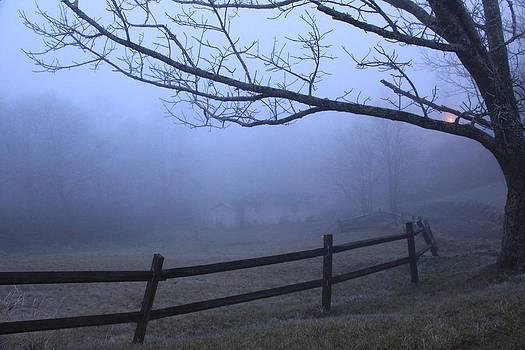 Foggy Farmland by AR Annahita