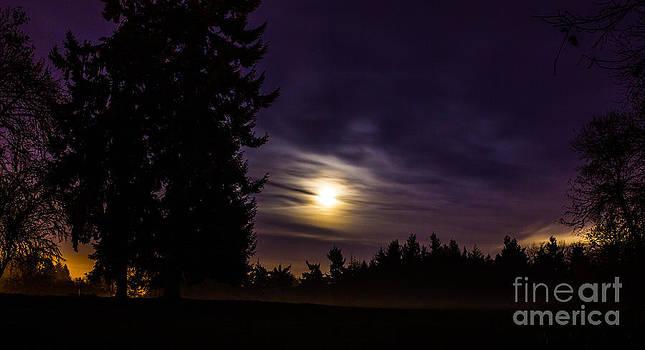 Foggy Moonlit Night by Michael Cross