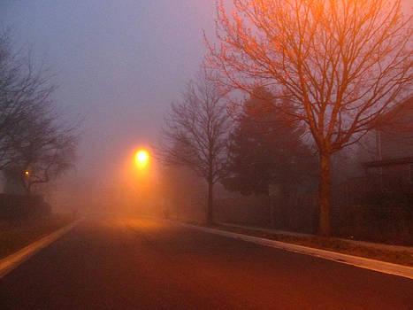 Alfred Ng - Foggy Morning