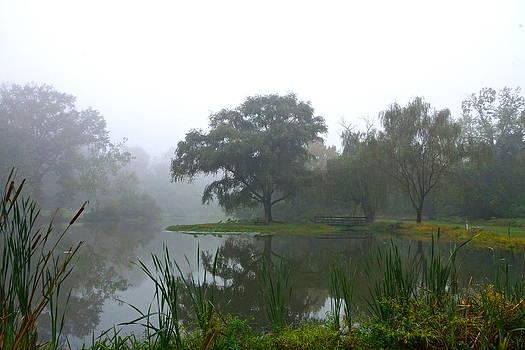 Byron Varvarigos - Foggy Morning At The Willows