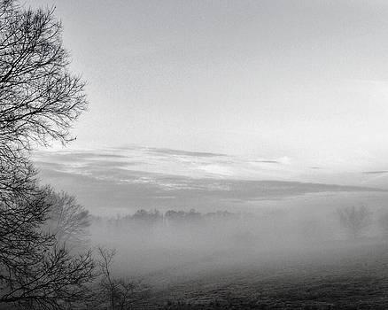 Foggy Morning by Christine Bradley