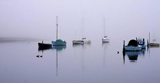 Foggy Morning by Kathryn Potempski