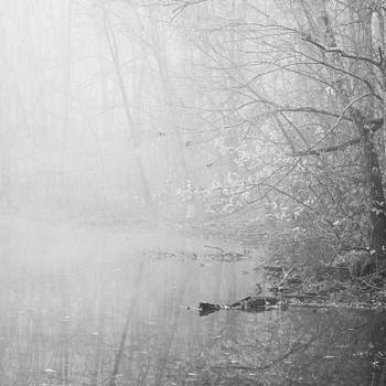 Foggy Morning on the Water by Jessie Gould
