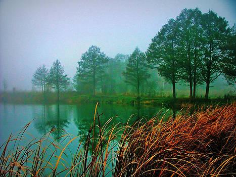 Foggy morning by Slawek Sepko